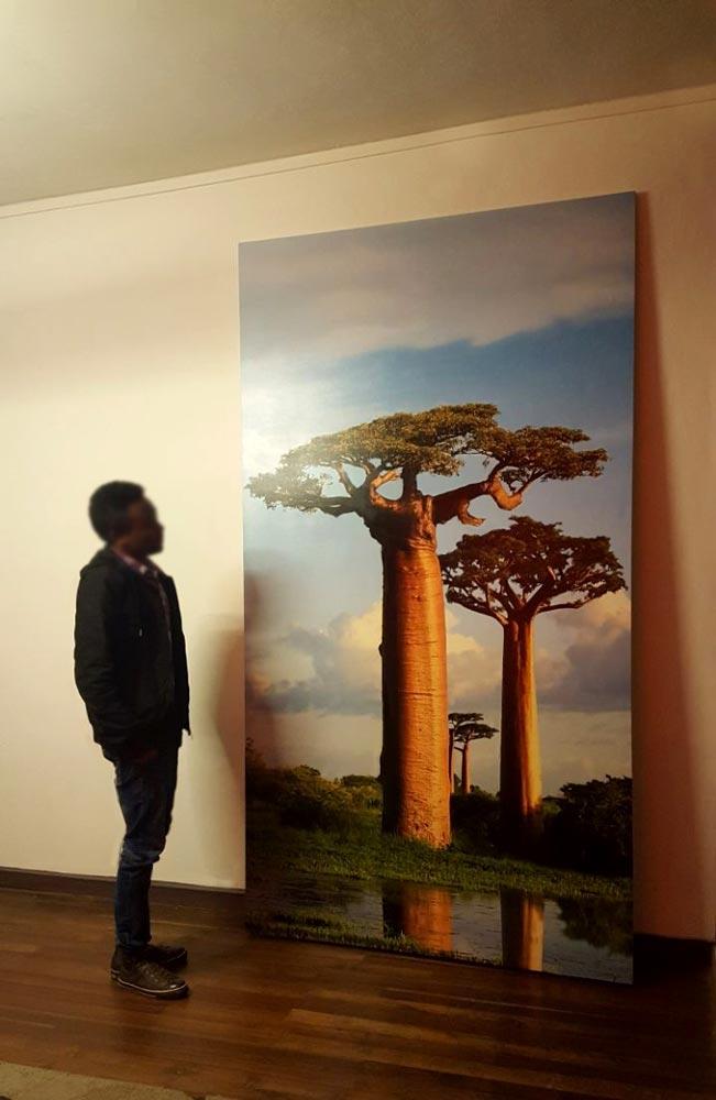 CAD 021 Tableau en grand format Baobab
