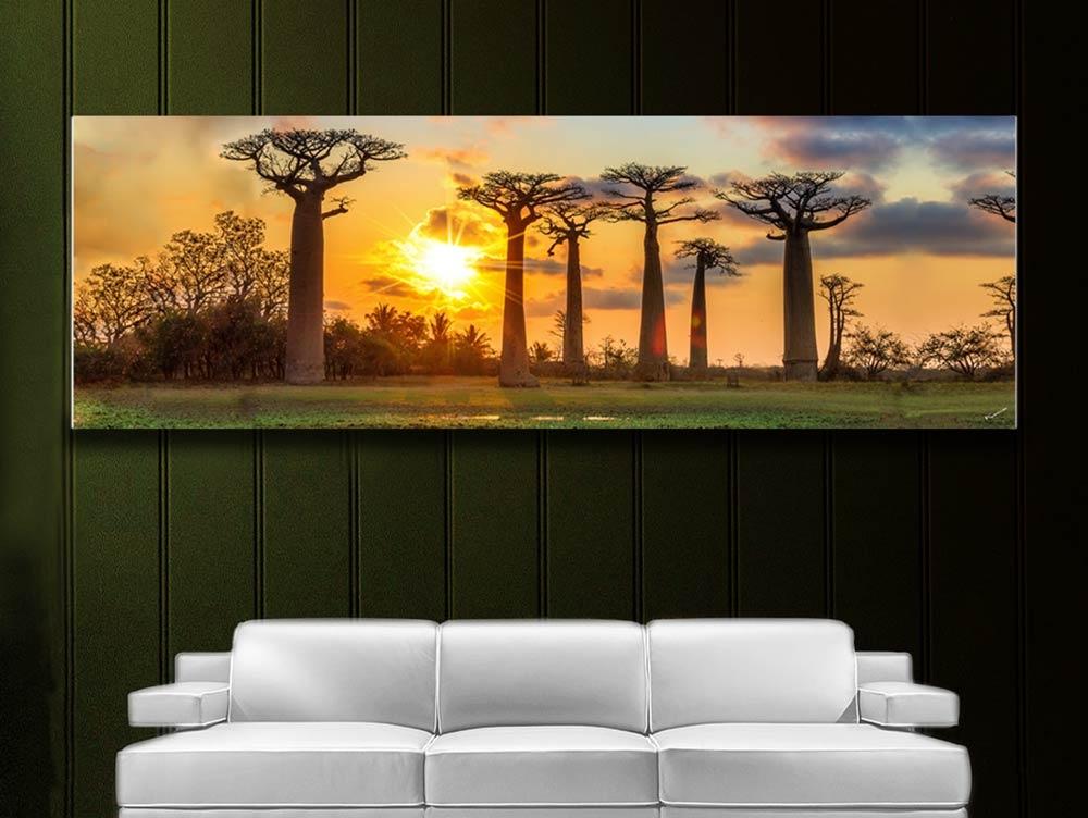 PAN 005 Soleil couchant derrière les baobabs