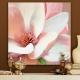 CT 109 Douceur floral